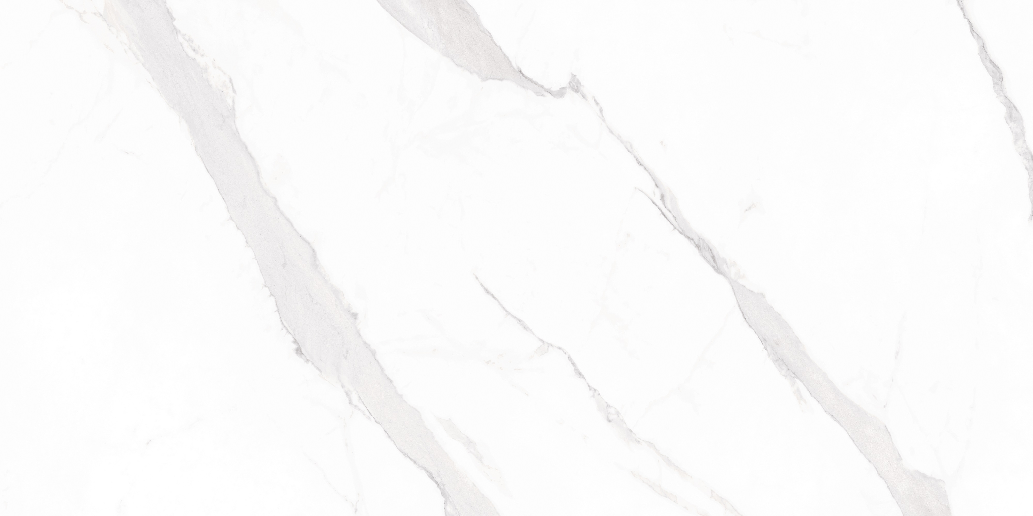 Polished Carrara White Tiles